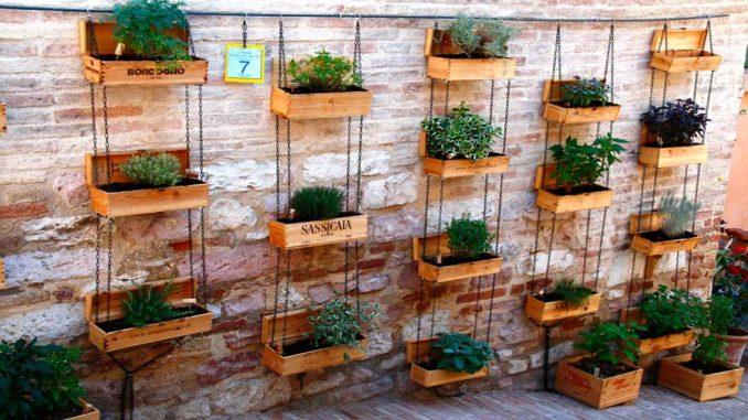Come coltivare le piante aromatiche in casa lifepare - Cucina sul balcone ...